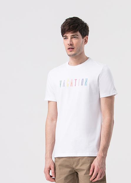 繡彩色字母T