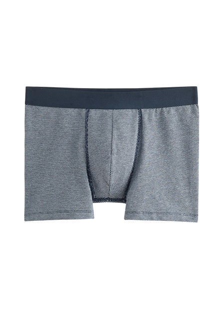 男中低腰棉質內褲