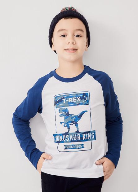 男童迷彩暴龍拉克蘭袖長T恤