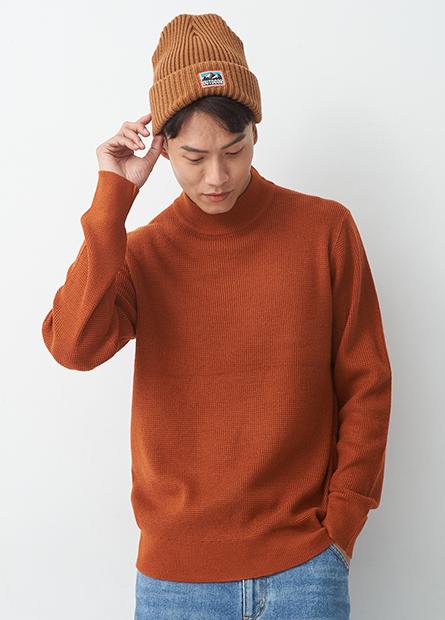 純色半高領針織毛衣